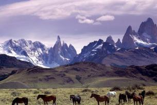 Argentina al completo en privado con guía
