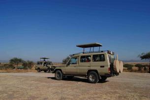 Safari Manyara y Tarangire en Campamento