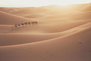 Fez y el Desierto de Marruecos