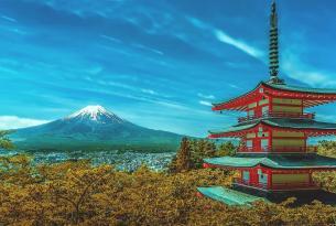 Paseos de Kioto en grupo