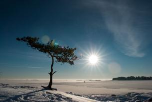 Aventura Polar: Suecia, Noruega y Finlandia