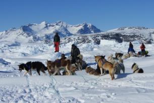 Expedición en trineo de perros por la costa este de Groenlandia