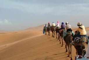 Contrastes de Marruecos: Ciudades imperiales y Kasbahs