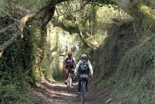 Camino de Santiago en mountain bike