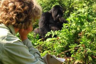 Uganda: trekking, gorilas y safari en grupo reducido