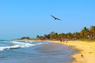 Semana santa en Gambia: Minicircuito y Playa