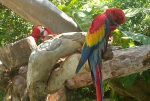 México: Chiapas aventurero