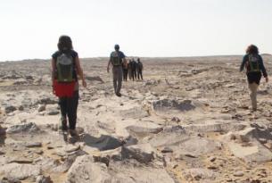 Egipto -  Senderismo en el Desierto Blanco.  -