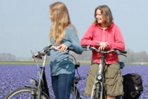 Holanda -  Por el Sur de Amsterdam en bicicleta - Salidas individuales