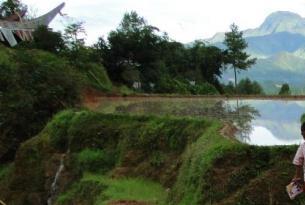 Indonesia -  Borneo, Sulawesi y Bali - Salidas en grupo
