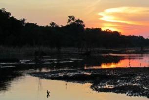 Brasil -  Río, Amazonas y  Salvador -