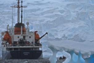 Antártida -  Cruceros de Expedición a la Península Antártica  - M/V Plancius, Ortelius y Ushuaia.  Nov 15' - Mar 16'