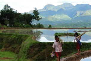 Indonesia -  Borneo y Sulawesi - Salidas de Mayo a Octubre