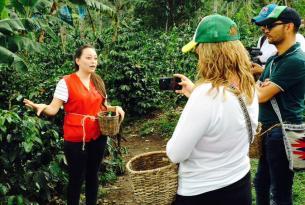 Colombia al detalle: Bogotá, la región cafetera y Cartagena de Indias