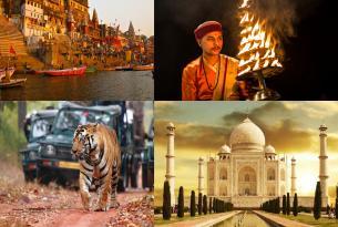 La India más salvaje con Rajastán y Benarés