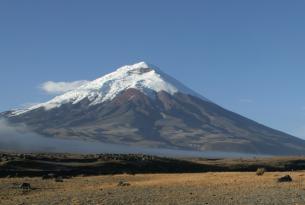Ecuador: el circuito clásico con Islas Galápagos (crucero)