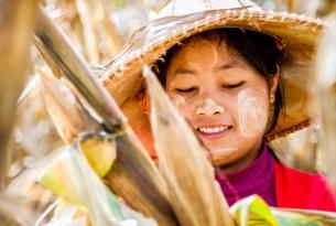 Las fascinantes Tailandia y Birmania  en 9 días