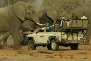 Safari por Zimbabwe y Botswana siguiendo la Senda de los Elefantes