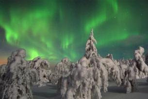 Finlandia. Trineo de perros, motonieve y raquetas