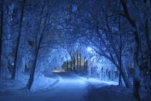 Finlandia. Esquí Nórdico por la Frontera Rusa