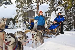 Finlandia. Fin de año en Laponia: trineo de perros, Renos y Motonieve (7 días)