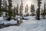 Multiaventura y cataratas del Niágara en Canadá