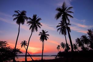 Sri Lanka Aventura: 10 días de sur a norte