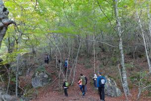 Bosques de Navarra: brujas de Zugarramurdi