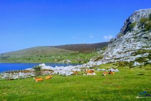 Senderismo en Asturias: Picos de Europa y Costa de Llanes
