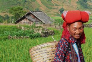 Vietnam Intenso - 2015