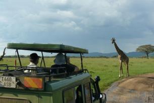 Tanzania y Zanzibar - Safari Ngiri y Zanzibar 2016