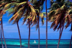 Descubre y vive Cuba