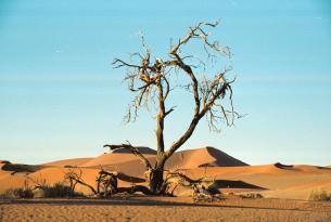 Namibia : Safari Itenga