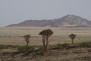 Namibia: La ruta de los desiertos