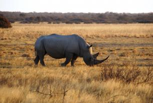 Botswana: de Maun a las Cataratas Victoria