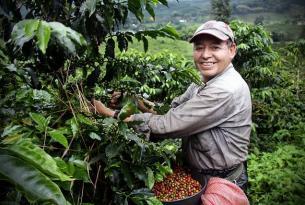 Colombia icónica: Bogota, Medellín, Cartagena y Santa Marta
