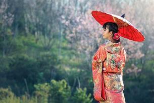 Japón: maravillas del Sol Naciente