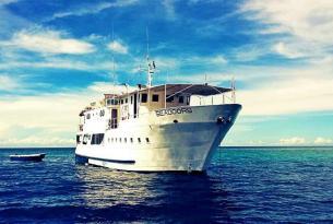 Viaje buceo safari Filipinas Tubbataha