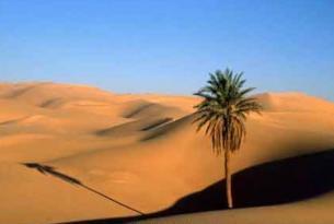 Egipto Low Cost (B)