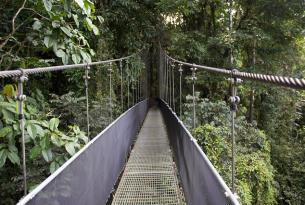 Costa Rica con niños: Tortuguero, Arenal, San José y más