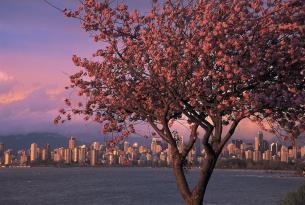 La Gran Ruta del Oeste: Canadá a tu aire en coche de alquiler