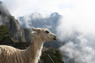 Perú: el legado de los  Incas y la época colonial