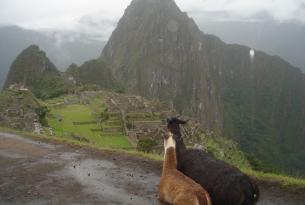 Perú: Valle Sagrado y Amazonas