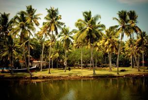 El sur de la India en 10 días