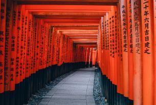 Japón, sus festivales y tradiciones en grupo (Awa dori, Tanabata y Obon)