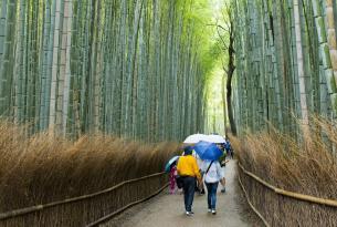 Puente diciembre Japón desde Barcelona (especial singles)
