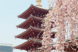 Semana Santa en Japón: Tokio, Kioto, Hiroshima y Osaka a tu aire (14 días)