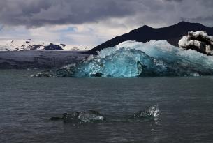 Maravillas de Islandia entre glaciares, playa negra y  cascadas (8 días)